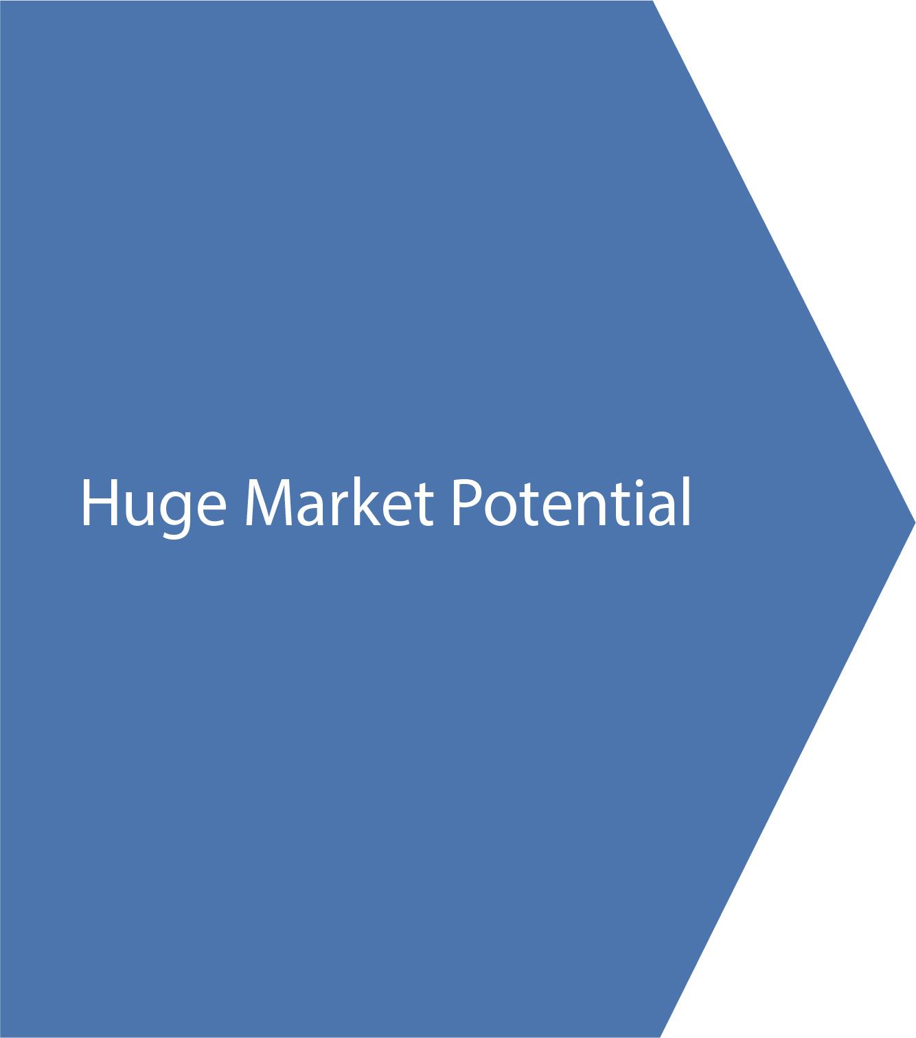 Huge market potential